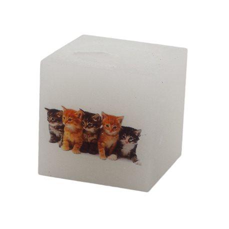Rentex Svíčka kostka Kočky
